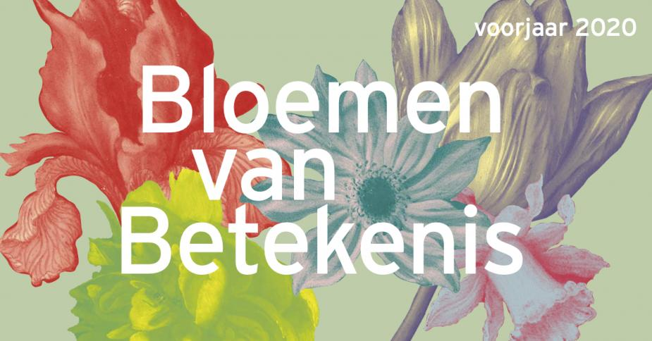 This image has an empty alt attribute; its file name is linkedin_afbeeldig_-_bloemen_van_betekenis_01.jpg